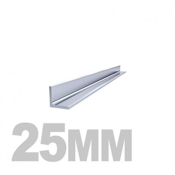Уголок нержавеющий (25мм x 25мм x 1.5мм) AISI 304 (l=3м) зерк./пл.