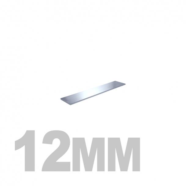 Полоса нержавеющая (12мм x 3мм) AISI 304